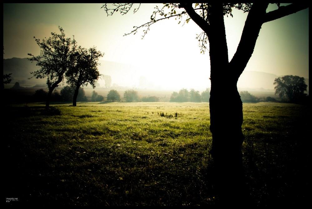 ghost lands 1