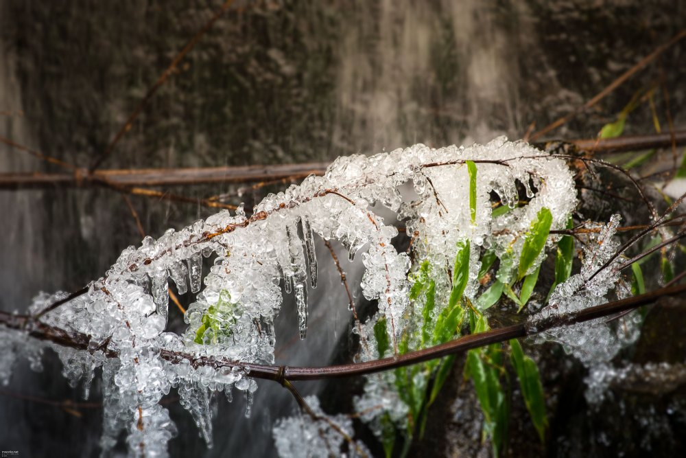 ice-ice-baby-004-online