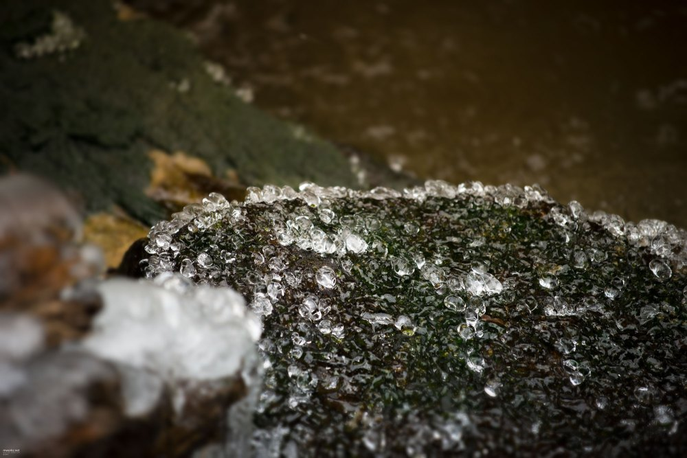 ice-ice-baby-006-online