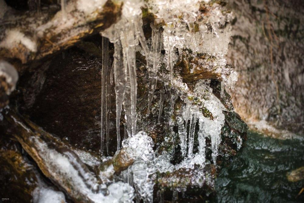 ice-ice-baby-010-online