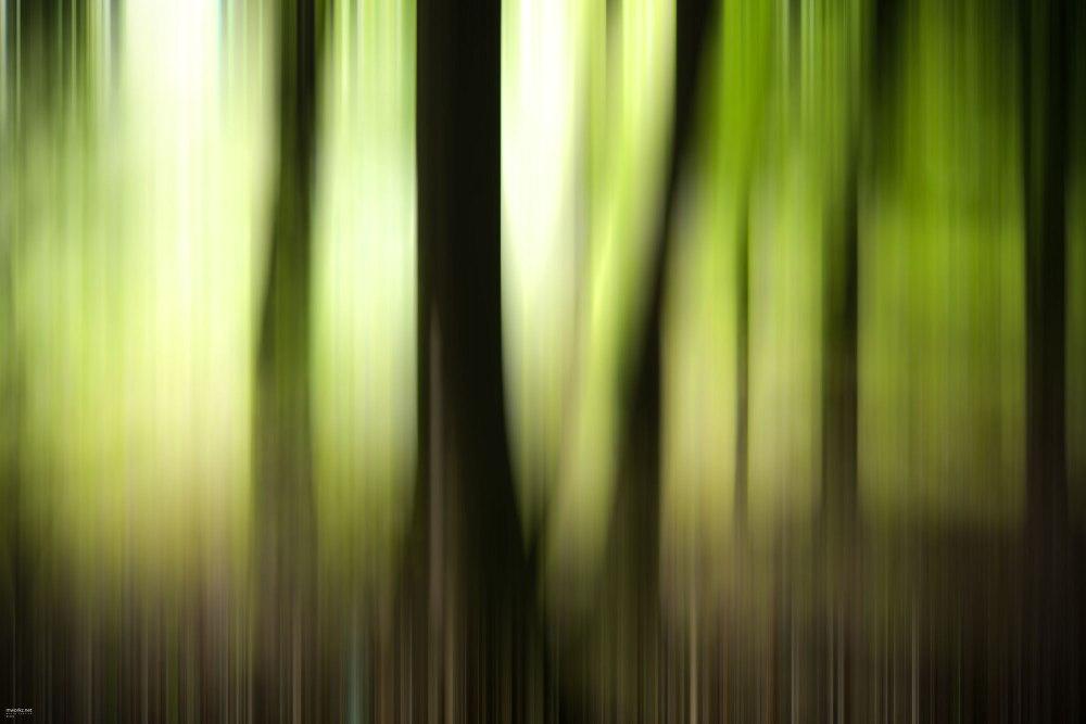 streaking-light-001