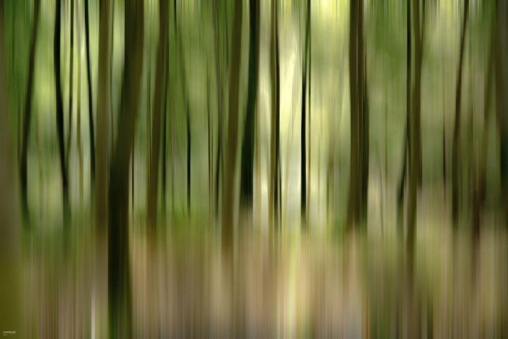 streaking-light-003