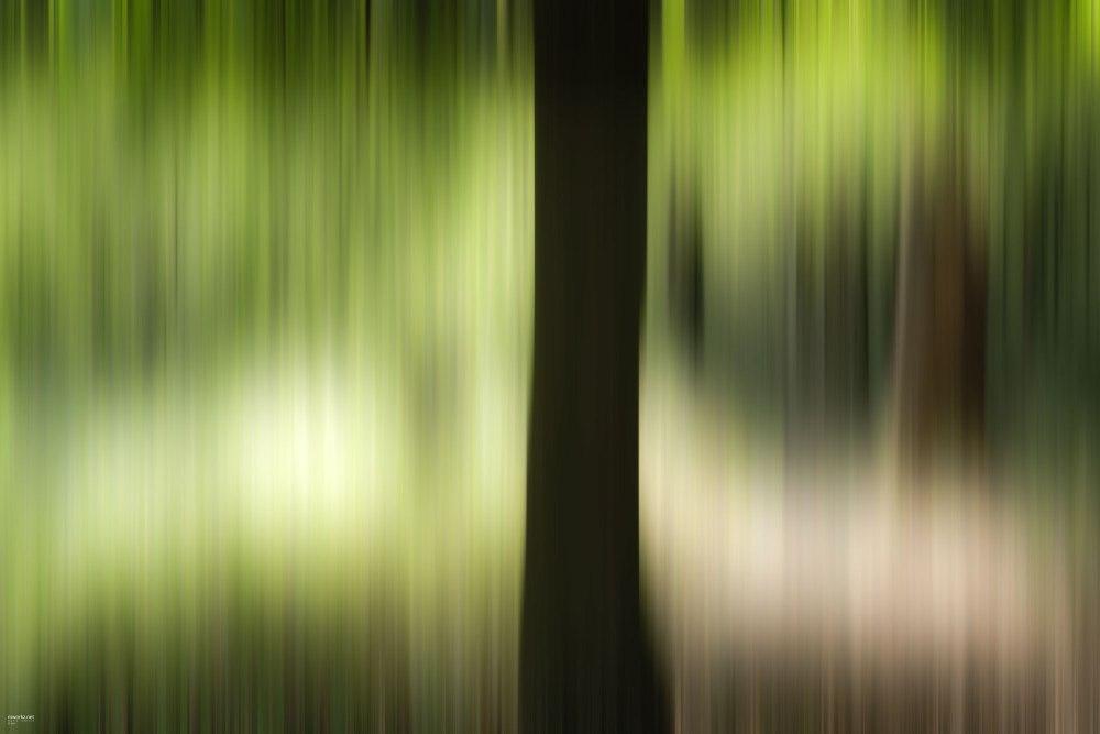 streaking-light-004