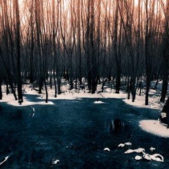 sundown-in-the-petrified-lands_002_online