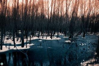sundown-in-the-petrified-lands_004_online