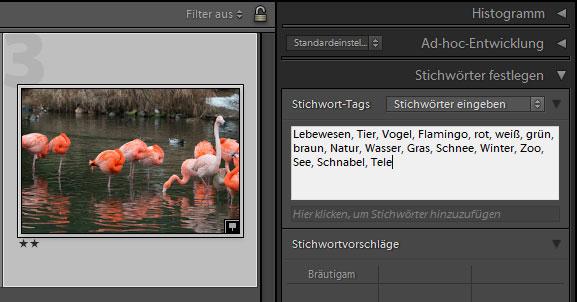 WSBM_teil04_screen005