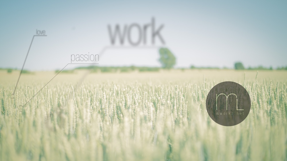 love-passion-work-mworkznet