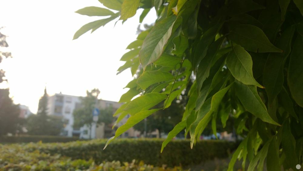Testfotos - Nokia Lumia 1020