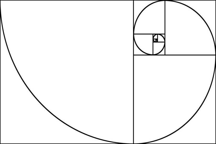 fibonacci-spirale_003