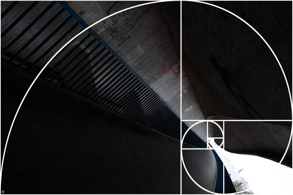 fibonacci-spirale_005