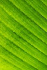 hands-on_zeiss-50mm_019_online