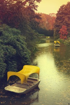 leaving-for-autumn_001_online