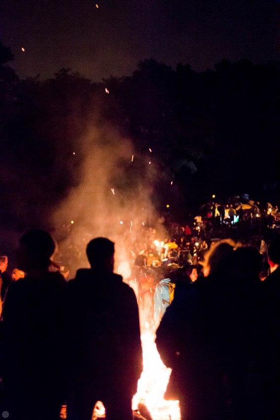 walpurgisnacht_2014_009_online