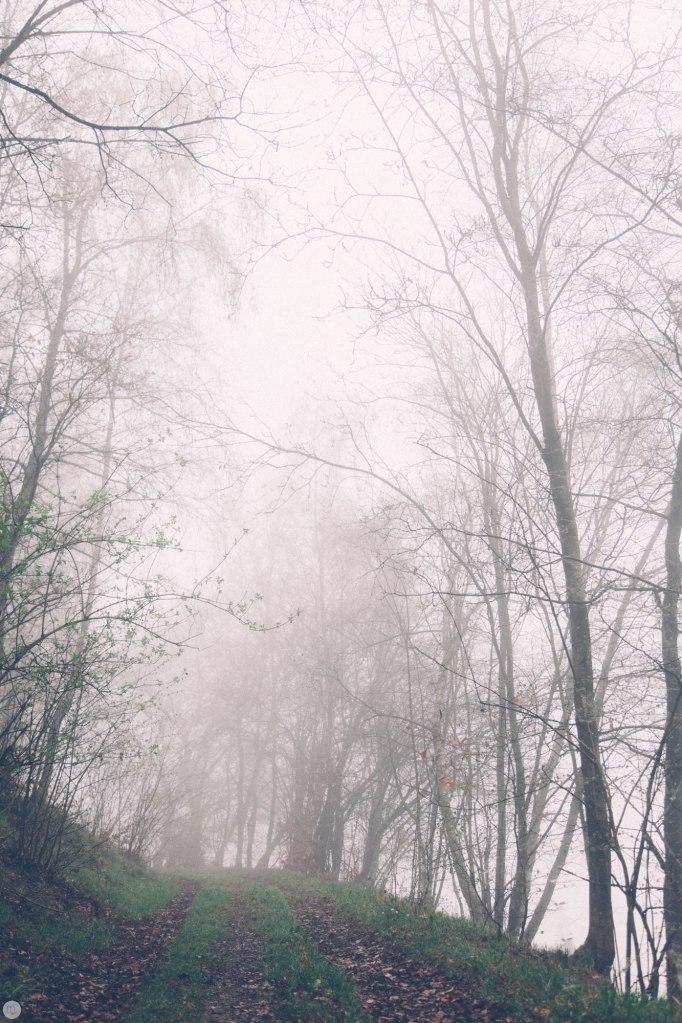 2014-online_0299_deaf-lands_002_online