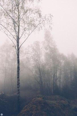 2014-online_0309_deaf-lands_012_online