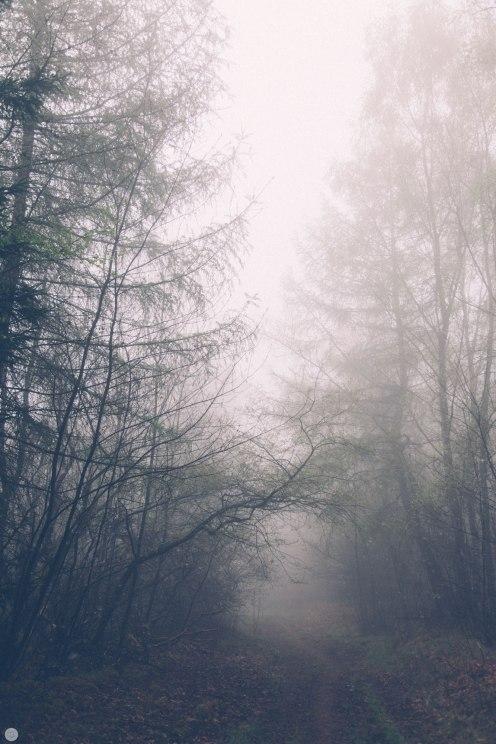 2014-online_0311_deaf-lands_014_online