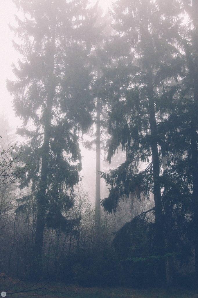 2014-online_0314_deaf-lands_017_online