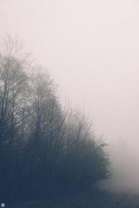 2014-online_0318_deaf-lands_021_online