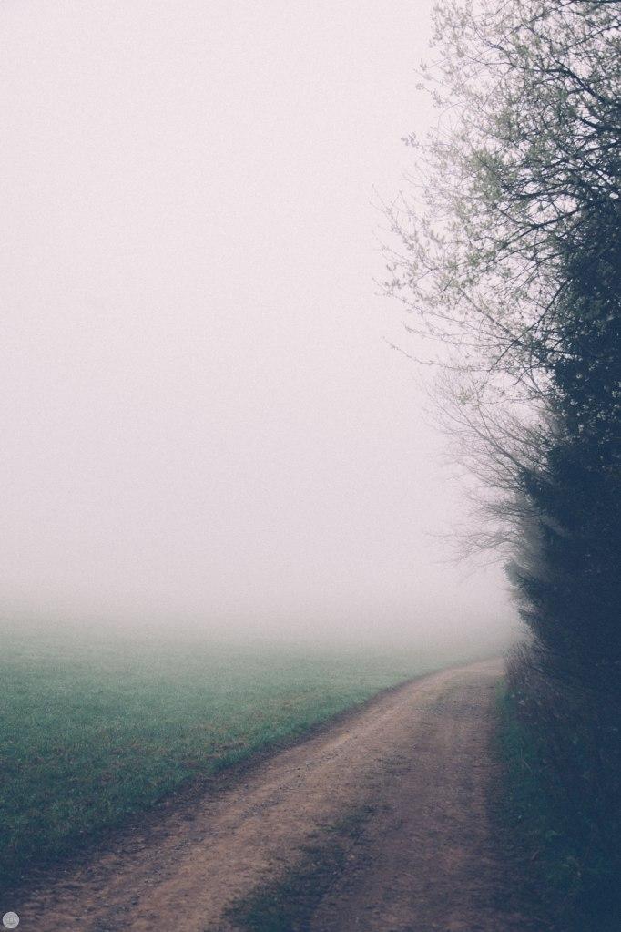 2014-online_0320_deaf-lands_023_online