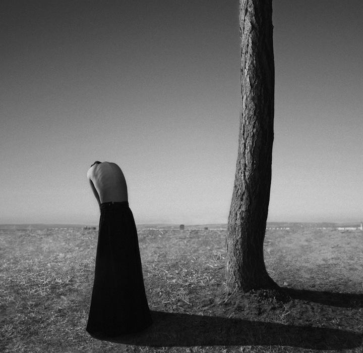 © Noell S. Oszvald,  silence