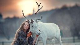 artikelbild_giba_elena-karneeva
