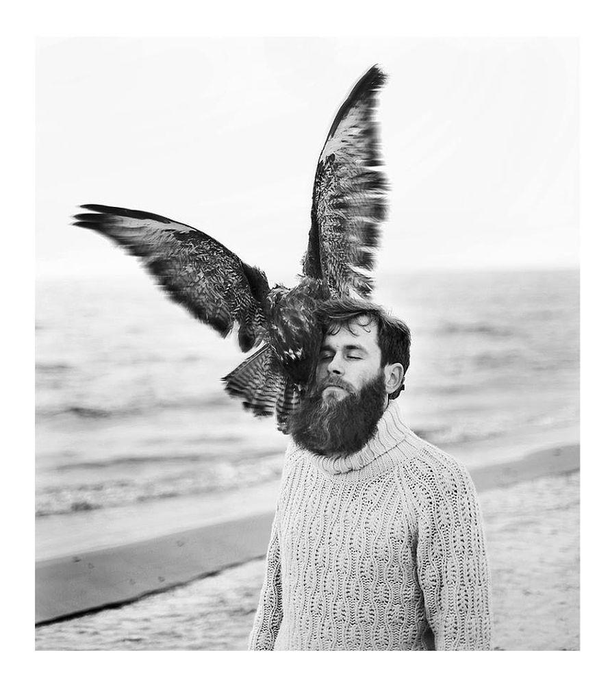 giba_raggana_birds