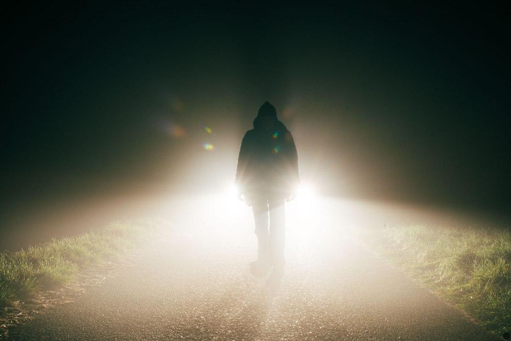 2014-online_1275_meet-in-the-dark_001